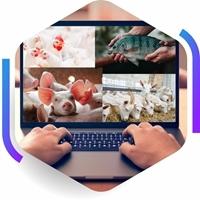 Imagem da capa - Software SuperCrac 6.1 Premium